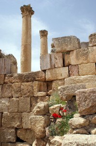 Ruins With Flowers, Jerash