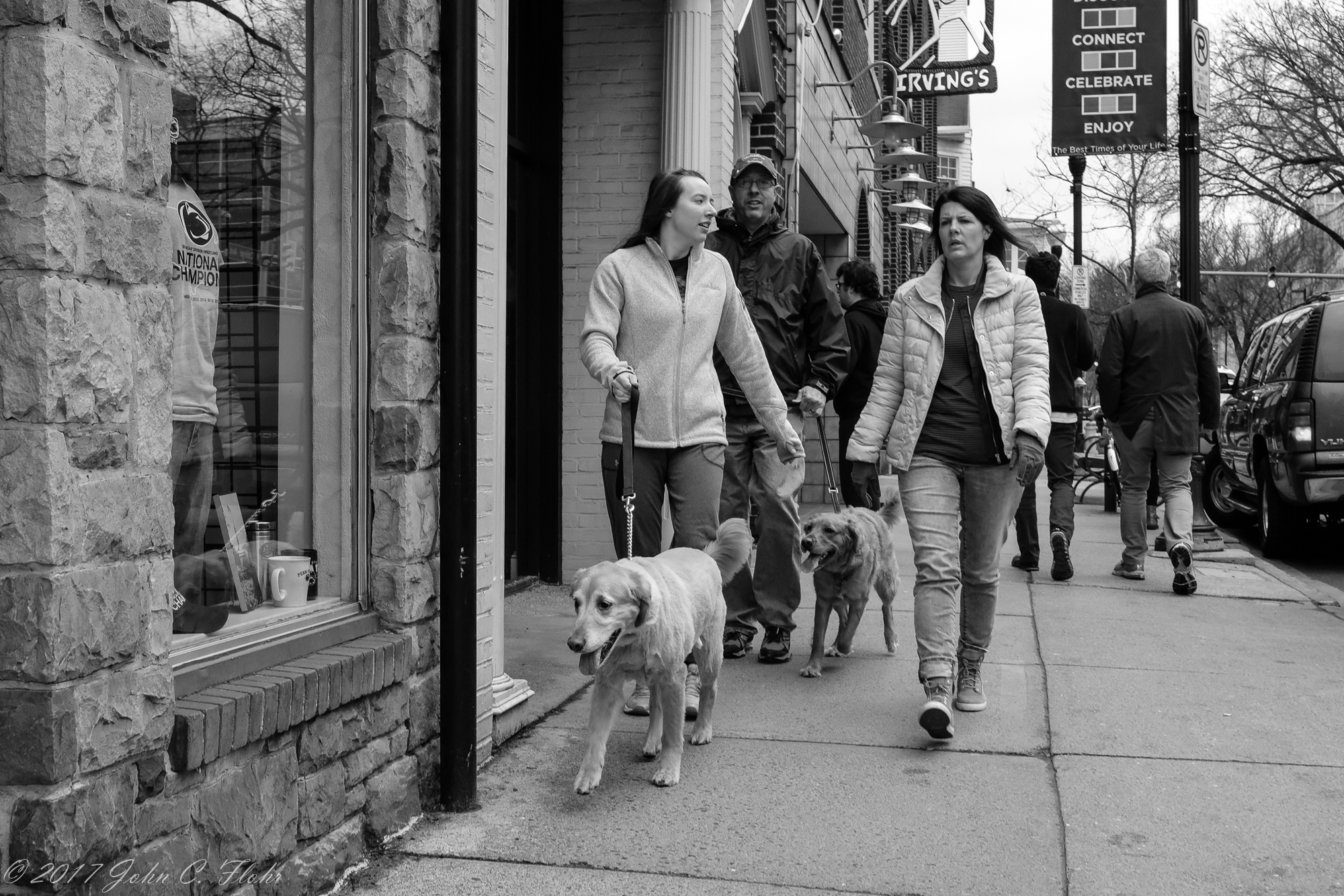 Dog Walking On College Avenue
